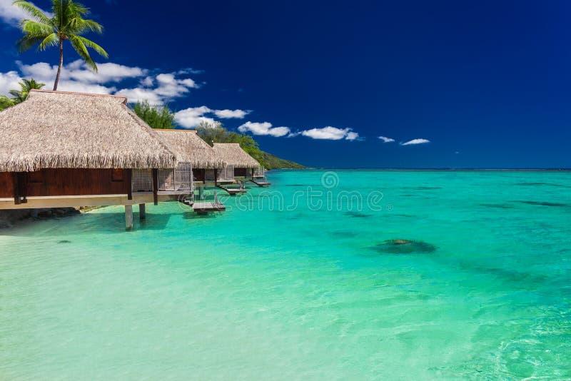 Les meilleurs pavillons d'overwater sur une île tropicale avec la plage vibrante image libre de droits