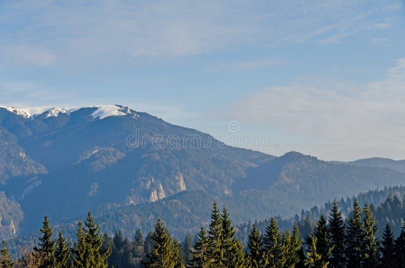 Les montagnes carpathiennes avec la forêt de pins, arbres colorés, ciel vibrant nuageux, temps d'automne-hiver Predeal, Roumanie image stock