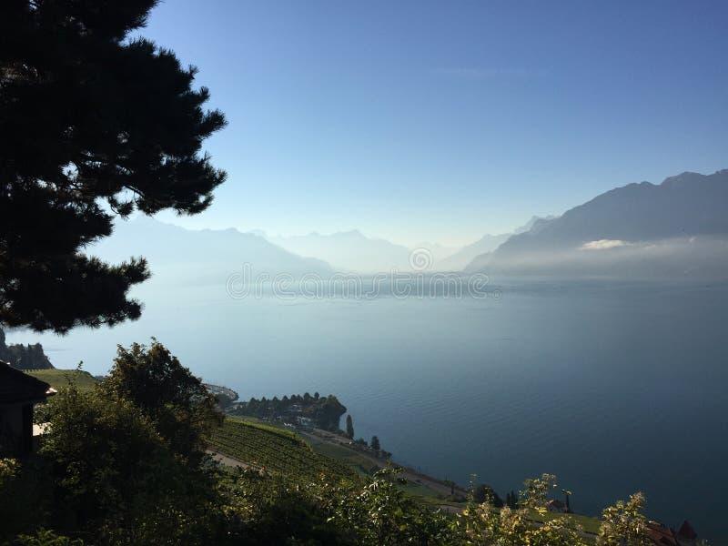 Les montagnes de vue nettoient des vignards stupéfiants image stock