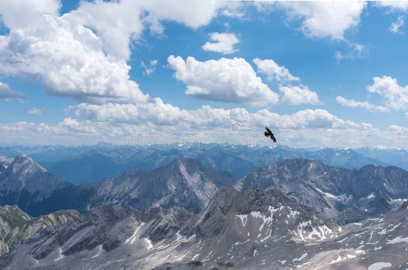 Les montagnes des Alpes au Tyrol et l'oiseau en vol photos stock