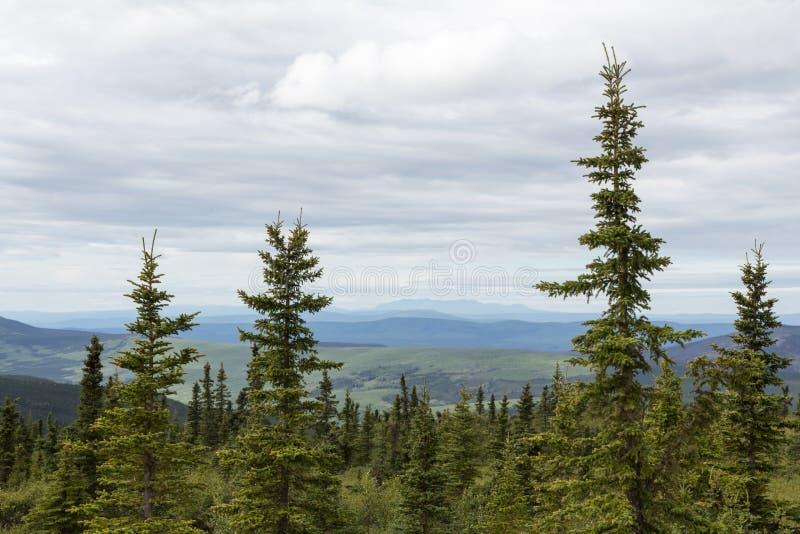 Download Les Montagnes Et Les Forêts De L'Alaska Image stock - Image du côte, nuage: 76076057