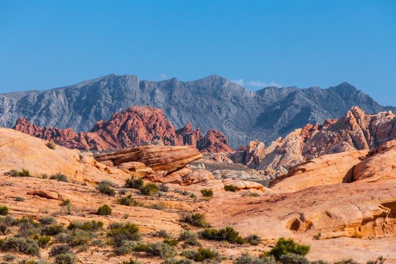 Les montagnes et les roches rouges sur l'horizon aménagent en parc dans la vallée du parc d'état du feu, Nevada, Etats-Unis photos libres de droits