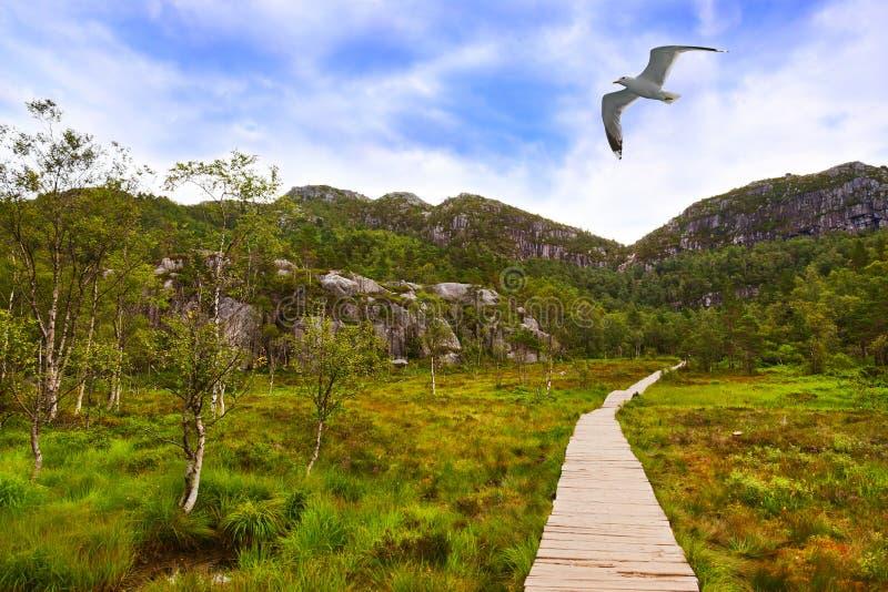 Les montagnes sur le chemin au pupitre de prédicateurs basculent dans le fjord Lysef image libre de droits