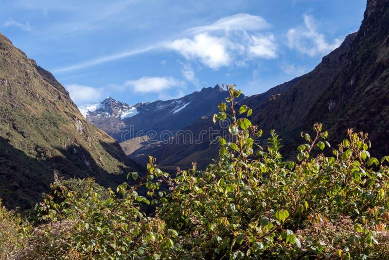 Les montagnes vertes avec la neige ont couvert des crêtes, les Andes, Pérou photos libres de droits