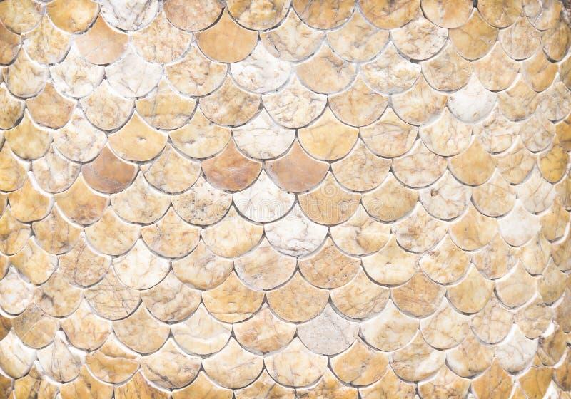 Les morceaux décoratifs de texture de marbre sur le mur en béton dans l'échelle de beaucoup de poissons de couche ont formé des m photographie stock libre de droits