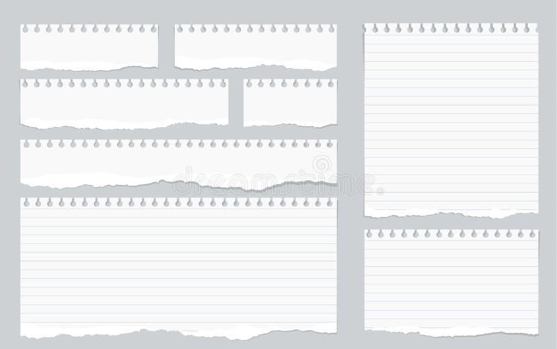Les morceaux de blanc déchiré ont rayé le papier de carnet sur le fond gris illustration stock