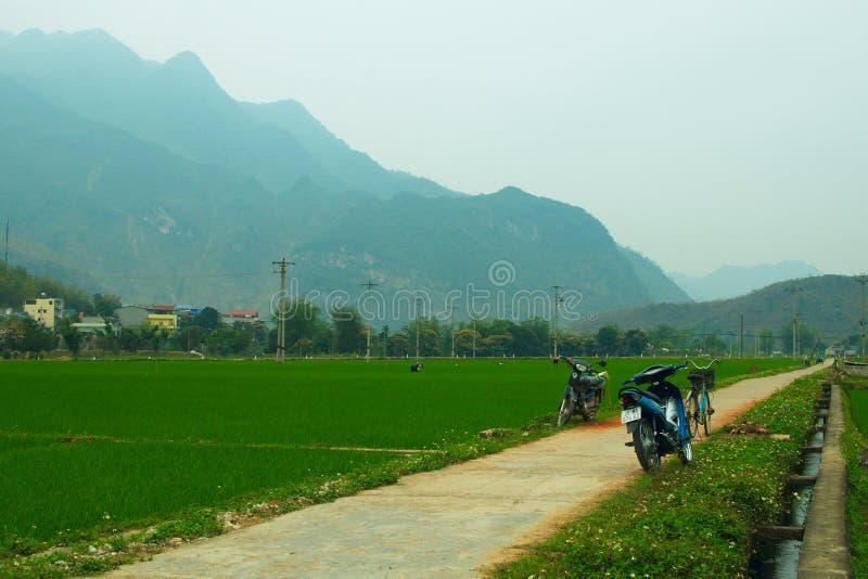 Les motocyclettes sur la route en riz met en place sur un fond bleu de montagnes photos stock