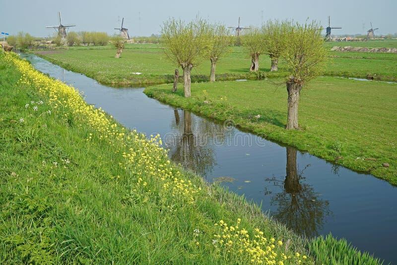 Les moulins à vent célèbres de Kinderdijk sur le fond du polder images libres de droits
