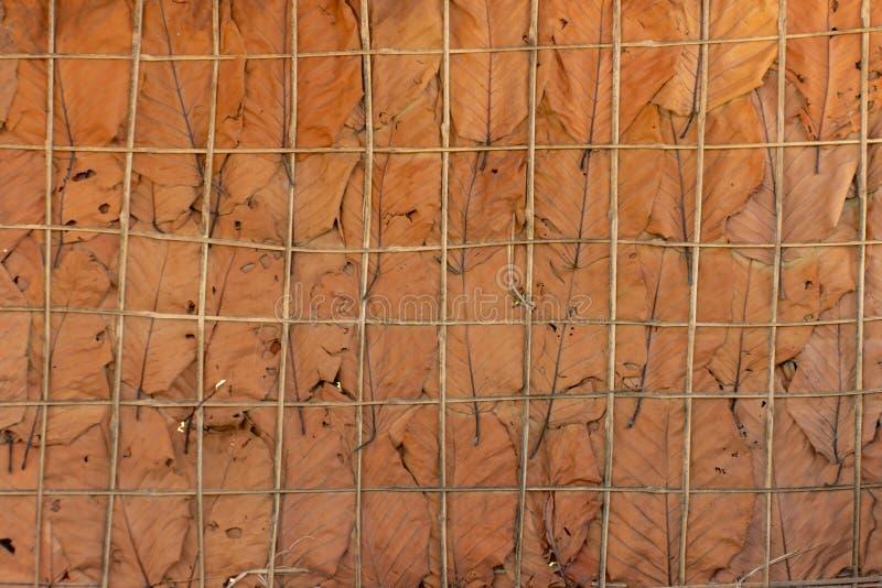Les murs sont faits de feuilles sèches utilisées comme fond photos libres de droits