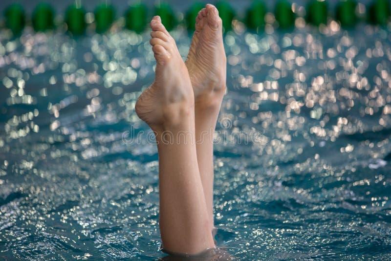 Les nageurs synchronisés se dirigent hors de l'eau dans l'action Mouvement synchronisé de jambes de nageurs Équipe de natation sy photos libres de droits