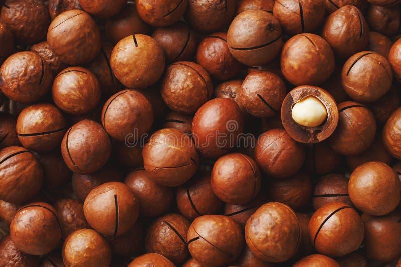 Les noisetiers d'Australie en grande quantit? en vrac sous forme de texture de fruit naturel frais ont ?coss? un ?crou dans le pl photo libre de droits