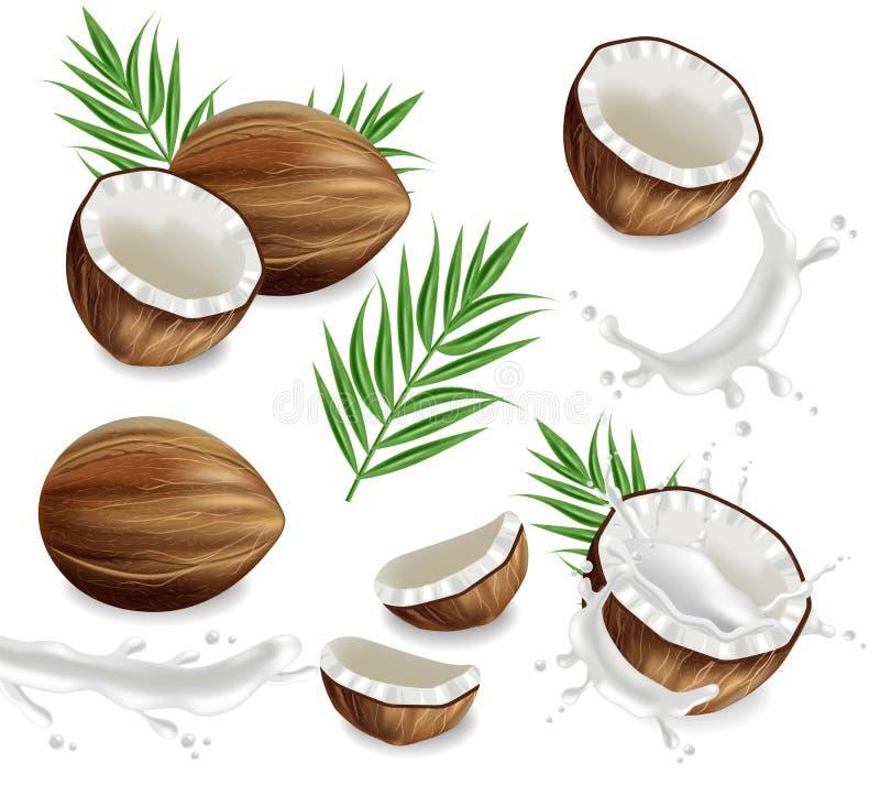 Les noix de coco avec la collection d'ensemble d'éclaboussure dirigent réaliste Cartes exotiques de tropique de calibre de dispos illustration de vecteur
