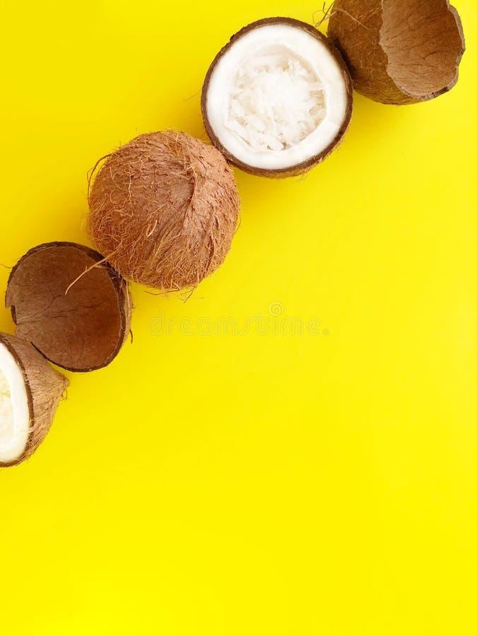Les noix de coco mûres ont présenté dans une rangée verticalement sur un fond jaune lumineux photographie stock libre de droits