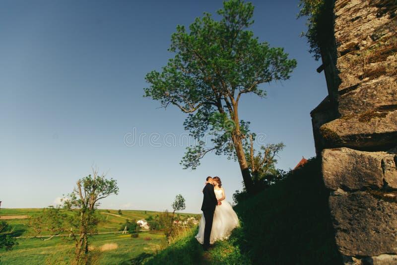 Les nouveaux mariés embrassent tout en s'élevant au château photo stock
