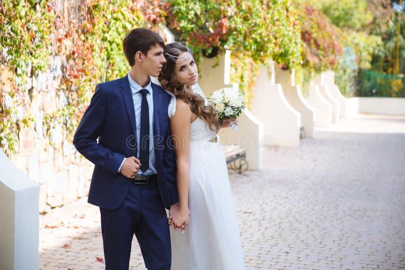 Les nouveaux mariés flânent par le parc blanc comme neige, admirent les environs, tiennent des mains L'homme est habillé dans un  image libre de droits