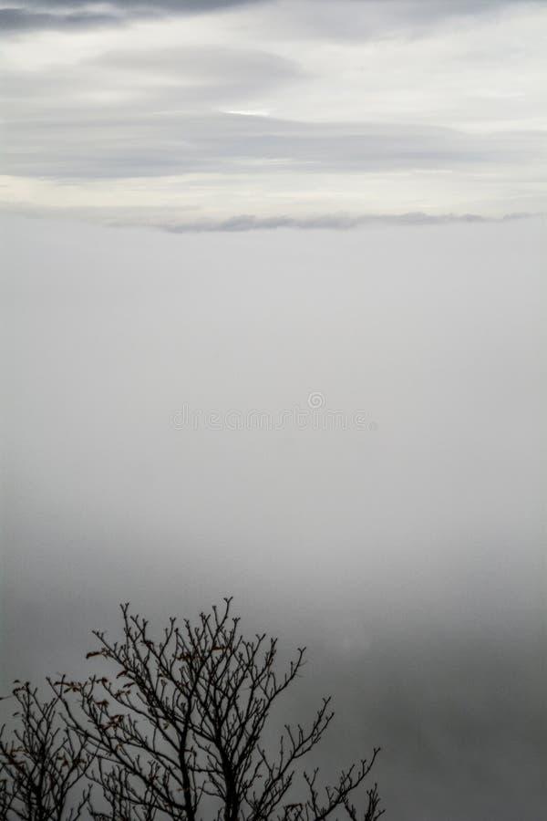 Les nuages gris et embrume fait la texture parfaite photographie stock libre de droits
