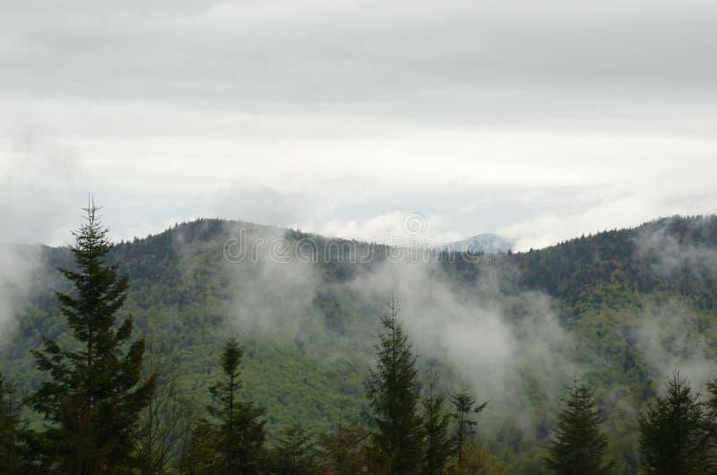 Les nuages se sont mélangés au brouillard et au flotteur après les montagnes photos stock