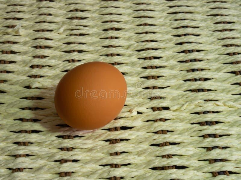 Les oeufs de Brown de la couleur claire se préparent aux vacances Pâques contre le fond d'une corde blanche et les branches foncé photos libres de droits