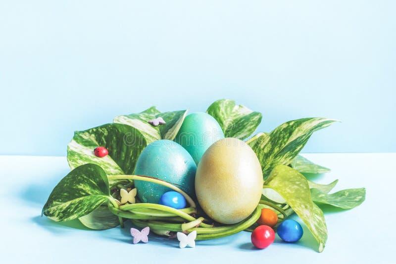 Les oeufs de pâques dans le nid du vert part sur un espace bleu de copie de fond photo libre de droits