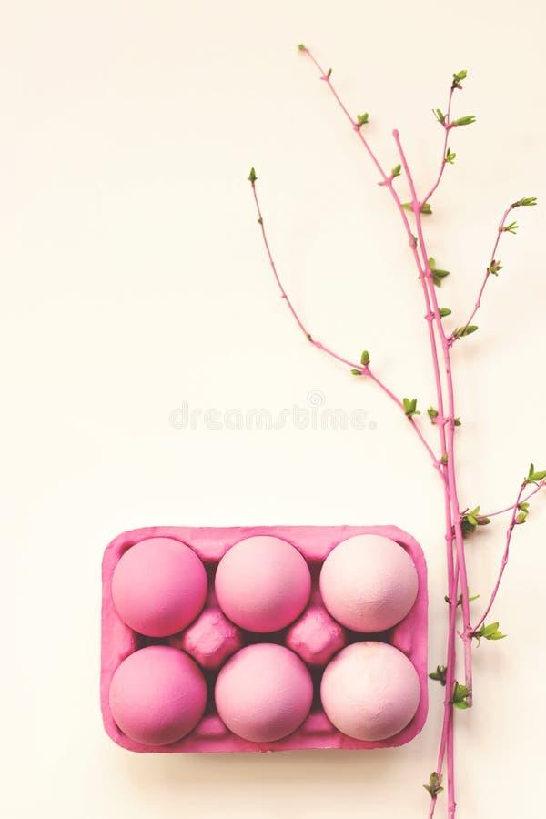 Les oeufs de pâques roses d'ombre sur le fond blanc avec le rose ont coloré des branches en fleur ; fond de Pâques avec l'espace  photos stock