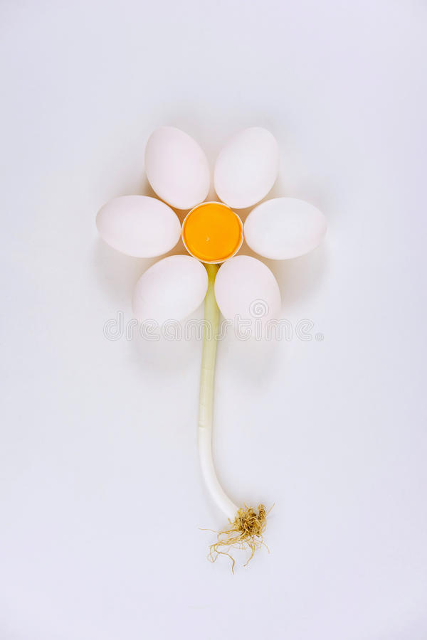 Les oeufs de poulet arrangent dans la forme de fleur photographie stock libre de droits
