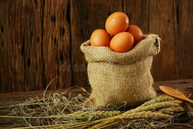 Les oeufs frais sur le fond en bois de la ferme et se préparent au cuisinier dans la chambre de cuisine, aliment biologique et ne photos stock