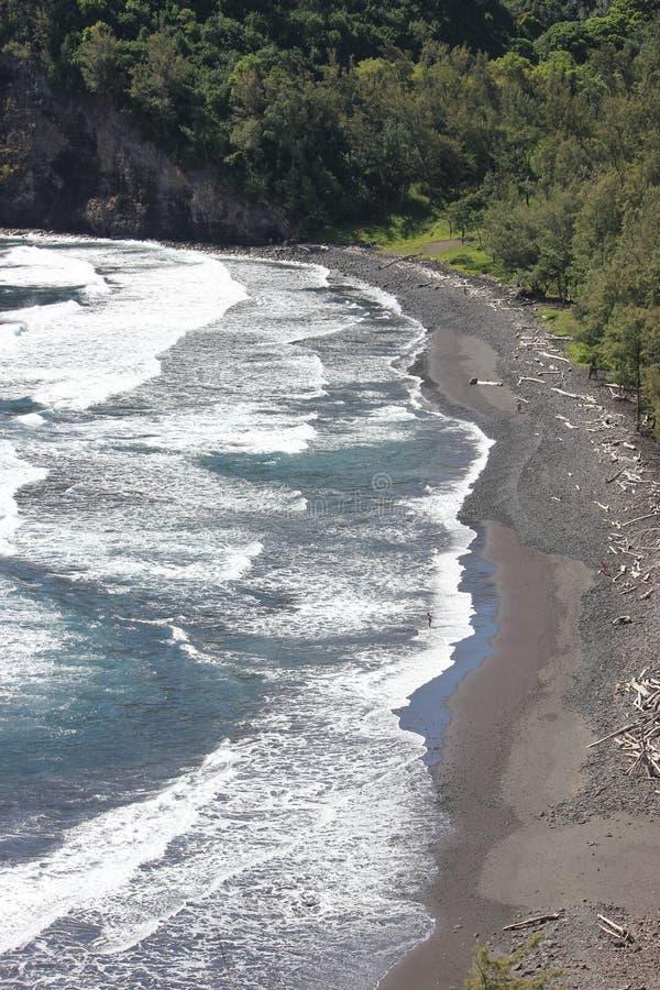 Les oiseaux observent la vue de la plage noire de sable en Hawaï avec le paysage et le ressac dramatiques images stock