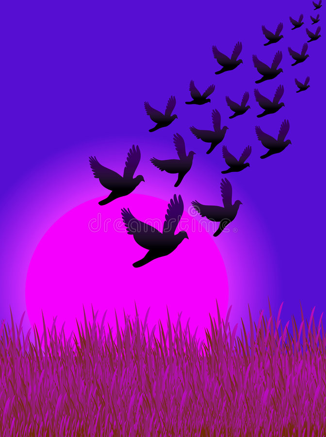 Les oiseaux pilotent 02 illustration de vecteur