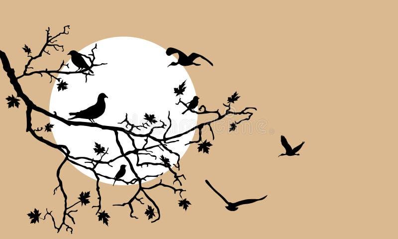 Les oiseaux silhouettent sur une branche illustration stock