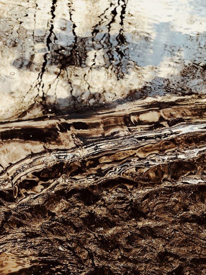 Les ondulations de l'eau reflètent la beauté de la nature intacte photo stock