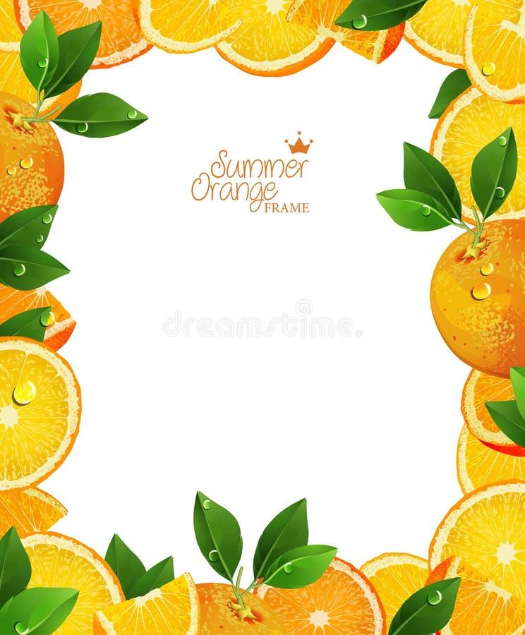Les oranges porte des fruits avec les feuilles, les tranches et le jus verts Vue illustration stock
