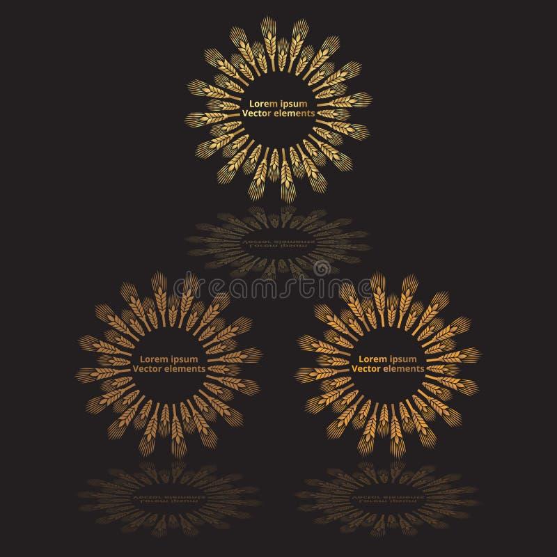 Les oreilles de blé, l'avoine ou les logotypes de vecteur de l'orge trois ont placé d'or sur le noir illustration de vecteur