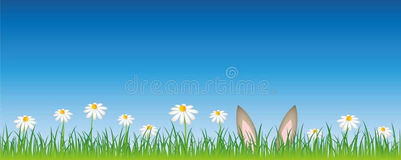 Les oreilles de lièvres se cachent dans une conception de Pâques de pré de fleur illustration libre de droits