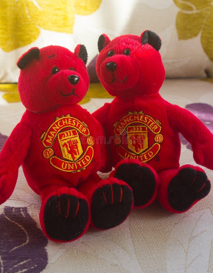 Les ours de nounours de Manchester United se caressent pendant qu'ils se fixent pour observer un match de football à la TV photos stock