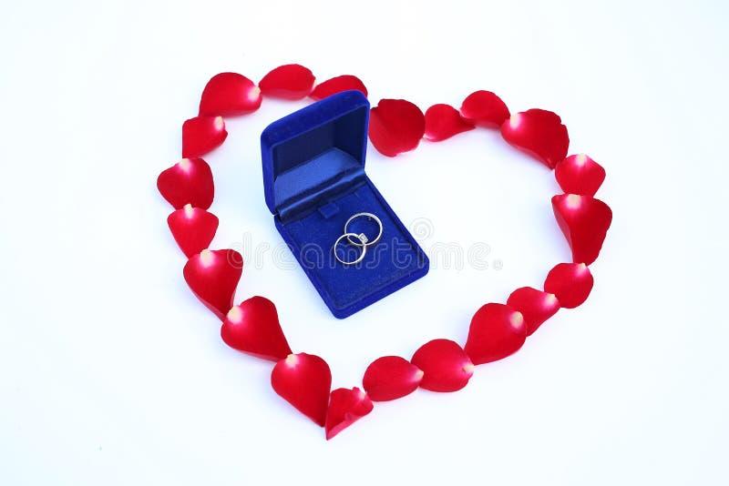 Les pétales de la rose de rouge fleurissent dans la forme de coeur avec des anneaux de mariage de couples sur le fond blanc photos stock