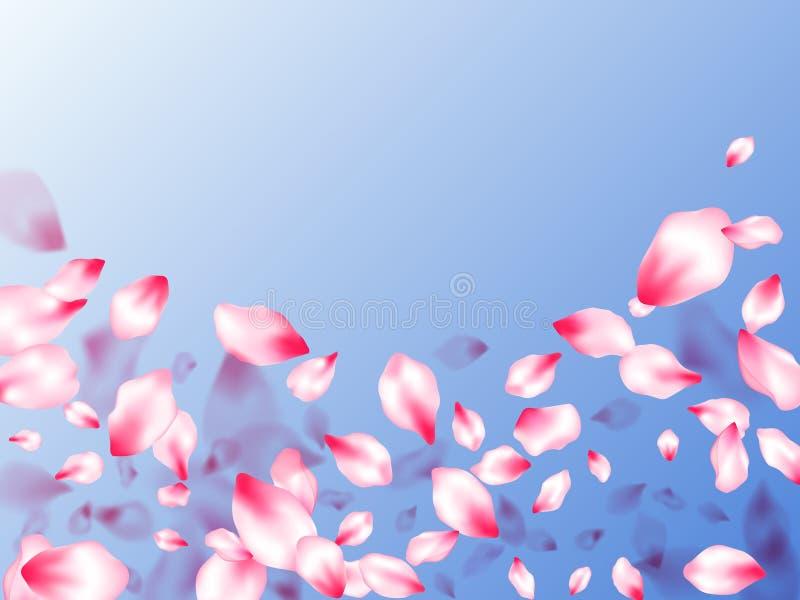 Les pétales roses de fleurs de cerisier ont isolé illustration libre de droits