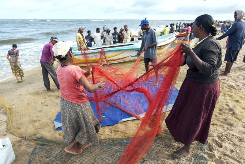 Les pêcheurs et les femmes assortissent des poissons de leurs filets sur la plage chez Negombo dans Sri Lanka images stock