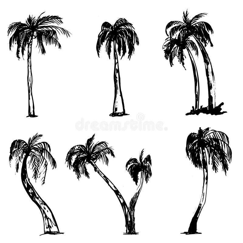Les palmiers grunges d'été de vecteur ont isolé le fond blanc Belle bannière d'été Ensemble tropical illustration stock