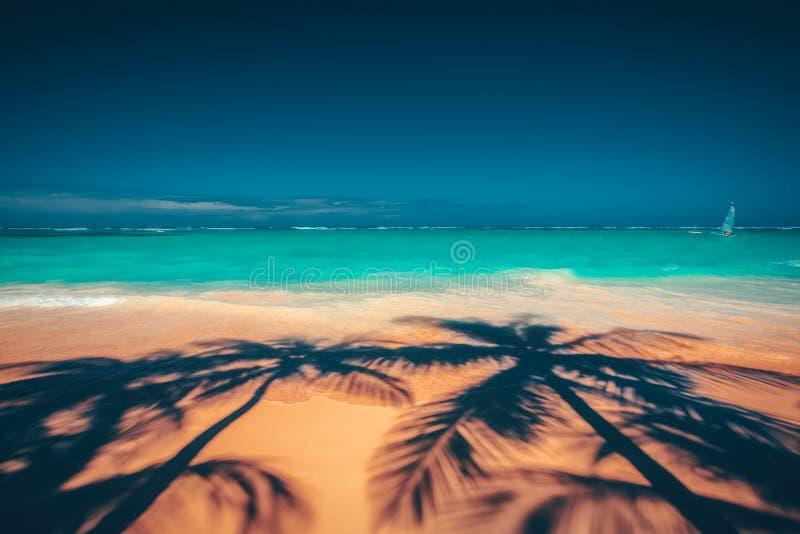 Les palmiers ombragent sur la plage tropicale Punta Cana, dominicain au sujet de photographie stock