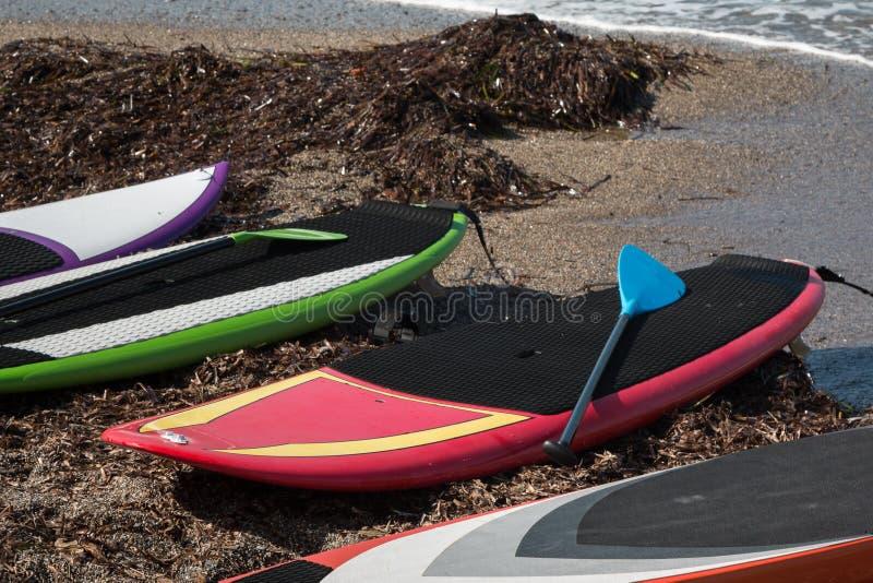Les panneaux indiqués pour se tiennent surfants sur la plage photographie stock libre de droits