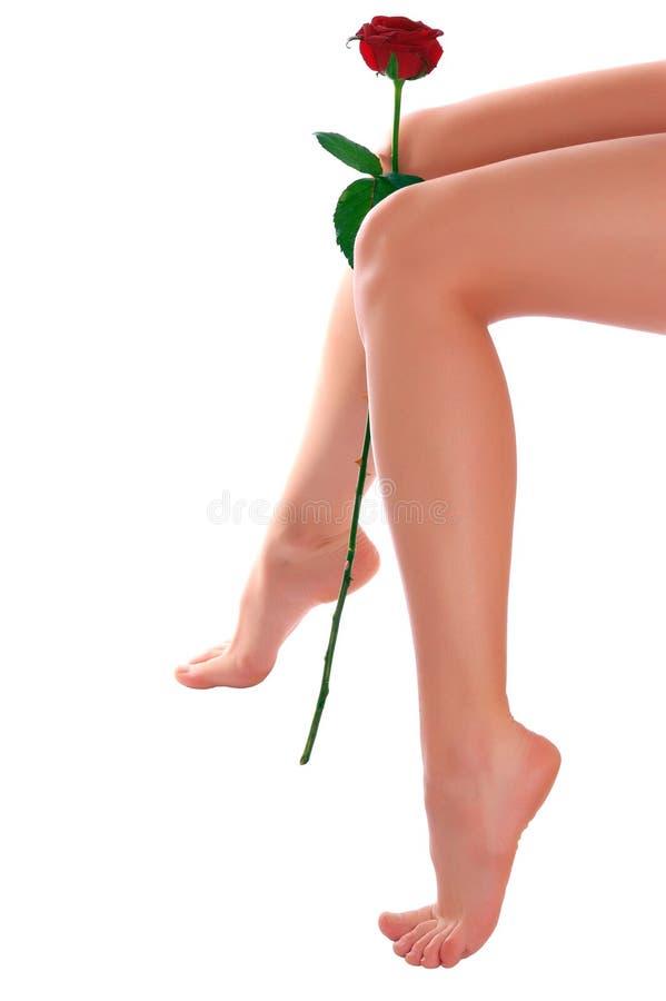 Les pattes de femme avec ont monté photographie stock