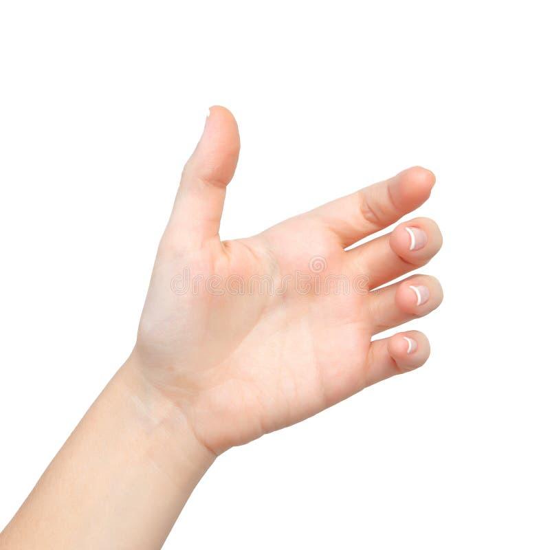 Les paumes femelles d'isolement de main ont retenu le sujet photo stock