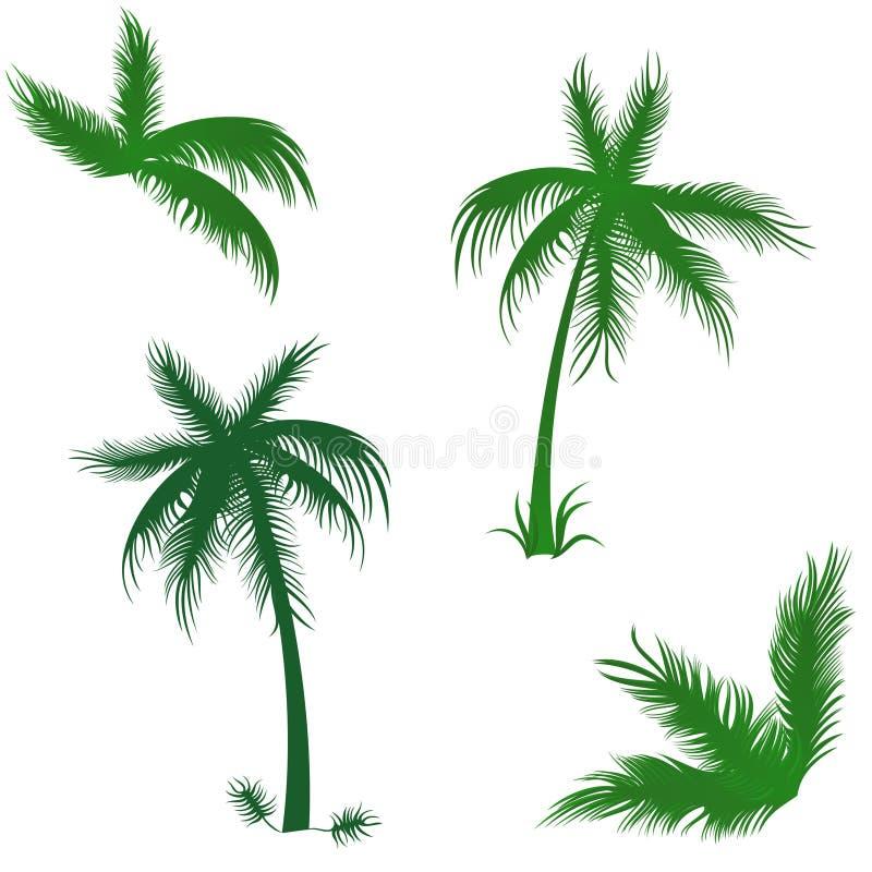 Les paumes tropicales ont placé illustration stock