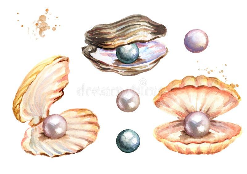 Les perles et les coquilles ont placé l'illustration tirée par la main d'aquarelle sur le fond blanc illustration stock