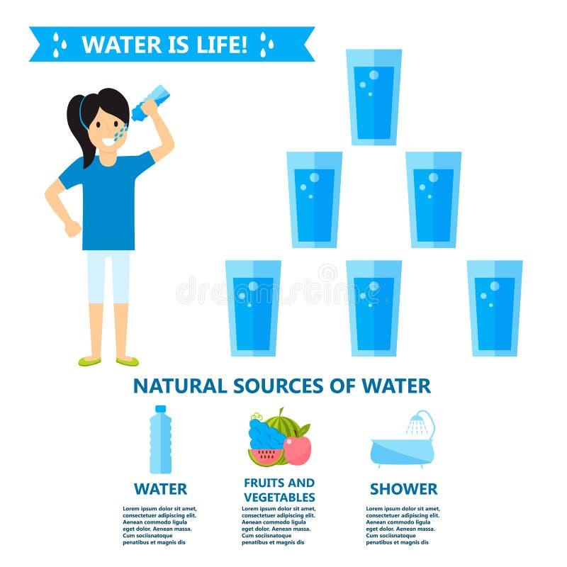 Les personnes de santé d'infographics de boissons de l'eau de corps suivent un régime l'illustration de vecteur d'infochart de br illustration de vecteur