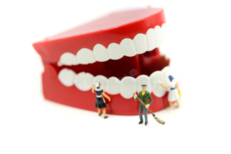 Les personnes miniatures nettoient la dent ou le modèle dentaire, soins de santé médicaux photographie stock libre de droits