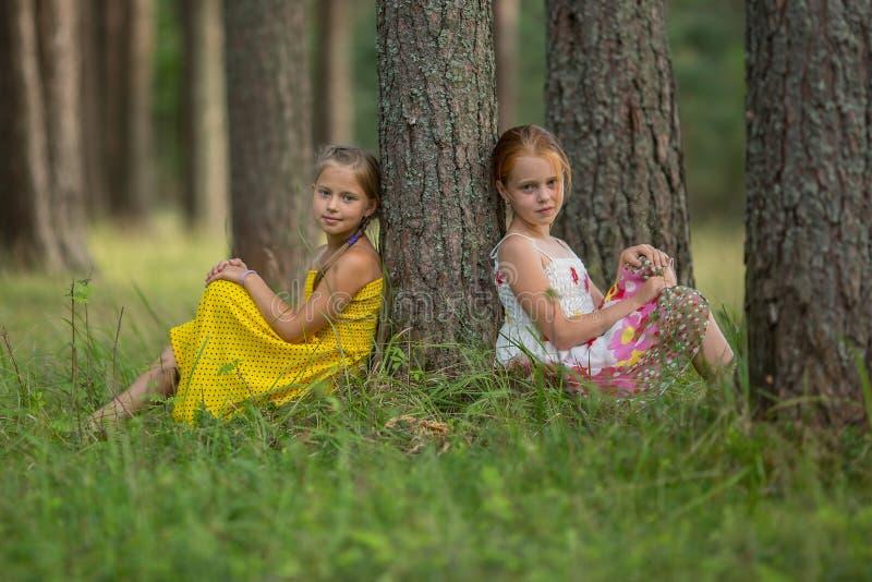 Les petites soeurs s'asseyent près d'un arbre en parc nature photo libre de droits