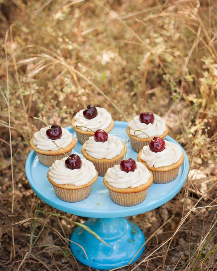 Les petits gâteaux de vanille sur un gâteau bleu se tiennent avec des cerises sur le dessus image libre de droits