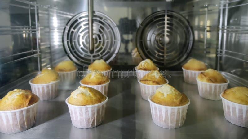 Les petits pains dans des tasses de papier fait cuire au four en four Vue par le verre photo stock