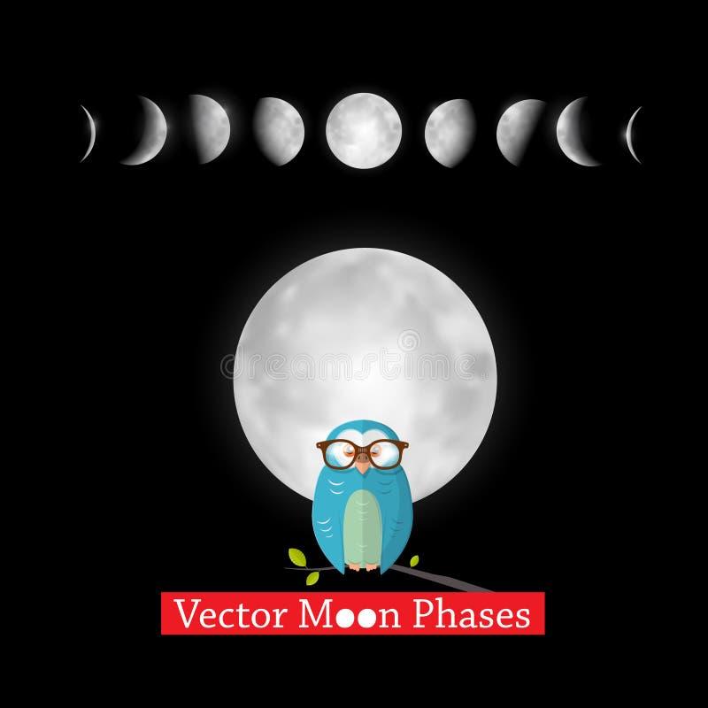 Les phases de lune dirigent la conception avec le hibou illustration de vecteur